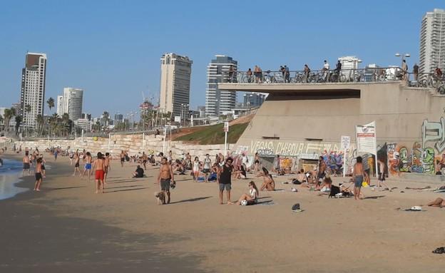 מתרחצים בחוף הים בתל אביב בניגוד להנחיות (צילום: N12)
