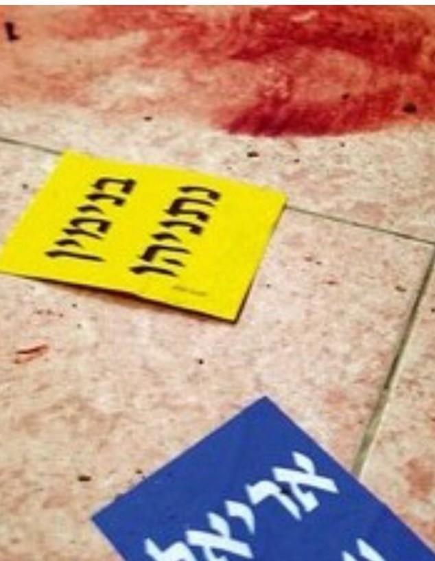 רצפת הסניף (צילום: חיים אזולאי, באדיבות מעריב)