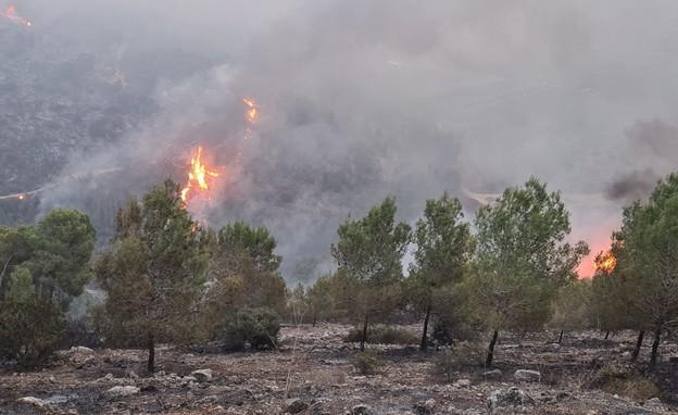 השרפות בצפון הארץ (צילום: תיעוד מבצעי, כבאות והצלה לישראל מחוז צפון)
