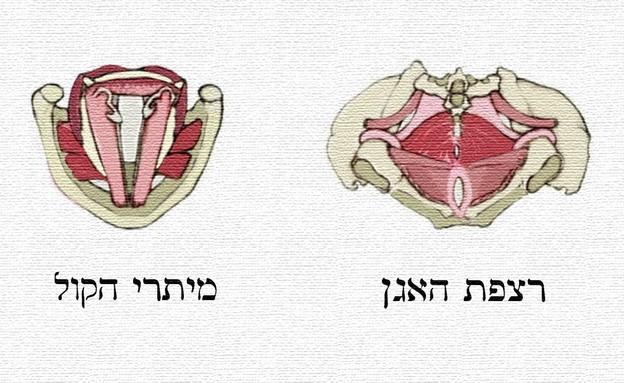 הפה העליון והפה התחתון (צילום: רינת לוק אלחייק)