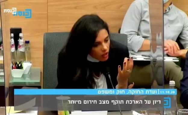 איילת שקד נגד הממשלה (צילום: ערוץ הכנסת)