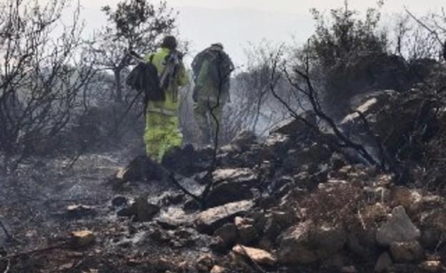 השרפה בהר דב (צילום: בסאם חרב, רשות הטבע והגנים)