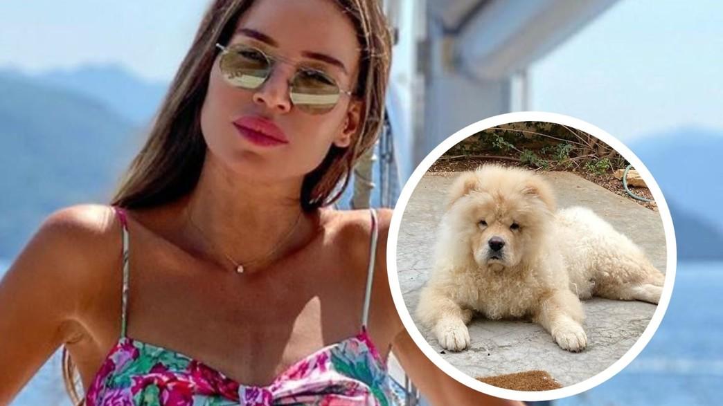 נטלי דדון והכלב (צילום: מתוך האינסטגרם של נטלי דדון, instagram)