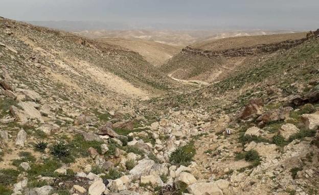 ערוץ 4 הבורות ונחל חסד (צילום: ענבל ארזי)