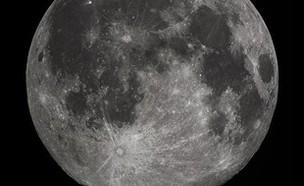 מים על הירח (צילום: Gregory H. Revera )