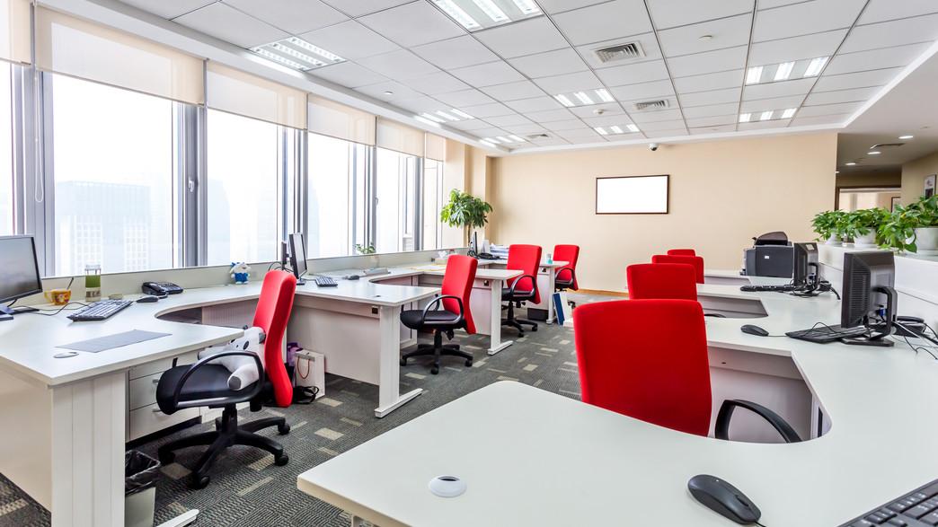 משרד (צילום: shutterstock)