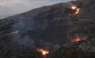 שריפה בשמורת החרמון (צילום: עמי דורפמן, רשות הטבע והגנים)