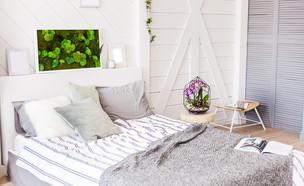 חדר שינה (צילום: shutterstock, Olga_Malinina)