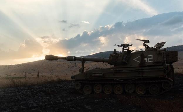 """הכוחות בשטח (צילום: דובר צה""""ל )"""