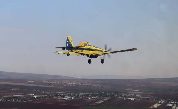 הטייסת (צילום: שי לוי)