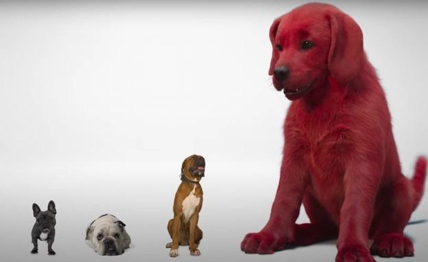 """מתוך """"קליפורד הכלב האדום"""" הסרט (צילום: יוטיוב - Paramount Pictures)"""