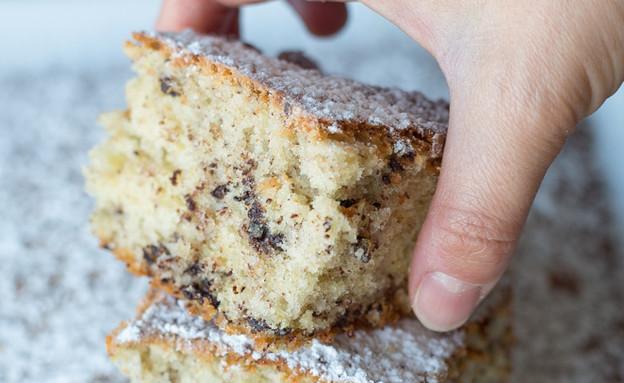עוגת קוקוס ושוקולד צ'יפס (צילום: קרן אגם, אוכל טוב)