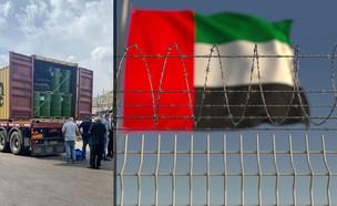 כלא דובאי (צילום: shutterstock | Novikov Aleksey)