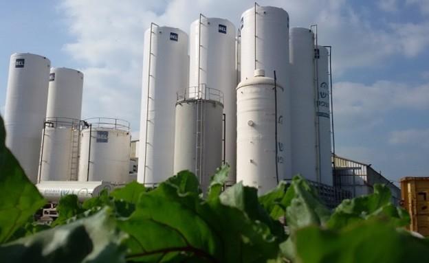 מפעל דשן צפון (צילום: יריב קריסטל- דשן צפון )
