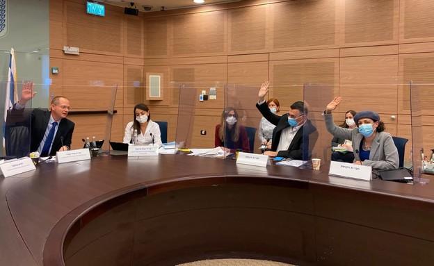 הוועדה לקידום מעמד האישה ולשוויון מגדרי (צילום: דוברות הכנסת)