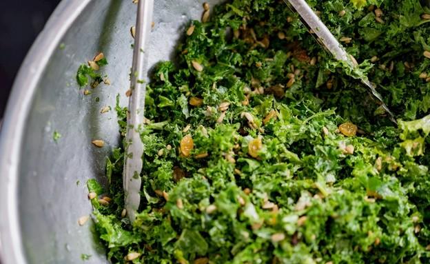 סלט עשבי תיבול וחמוציות של יעל גולדמן (צילום: יעל גולדמן)