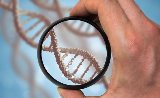 DNA (אילוסטרציה: vchal, shutterstock)