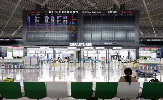 שדה תעופה ביפן (צילום: Sayuri Inoue / Shutterstock.com)