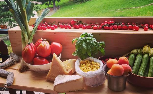 אחסון פירות וירקות, שלפי - 2 (צילום: ארז רוזנבלט)