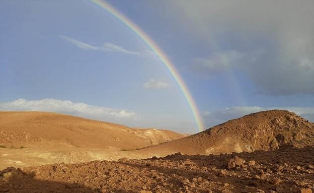 קשת במדבר יהודה (צילום: TPS)