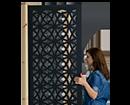 11 -  אישה, דלת (צילום: אורן טסלר, עיצוב: יובל טסלר)