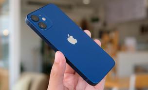 אייפון 12 מיני (צילום: Framesira / Shutterstock.com)
