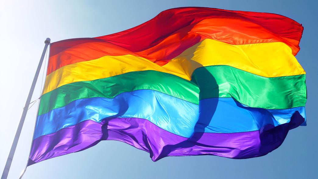דגל הגאווה (צילום: Natasha Kramskaya, Shutterstock)