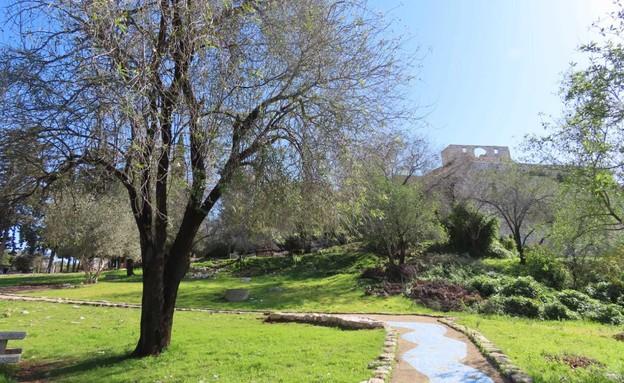 גן לאומי יחיעם בסגר שלישי (צילום: שרית פלצי מיארה, רשות הטבע והגנים)