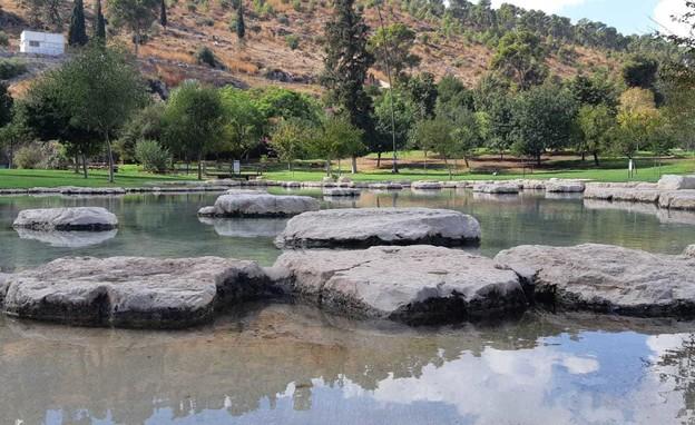 גן לאומי מעיין חרוד (צילום: רקפת שלו, רשות הטבע והגנים)
