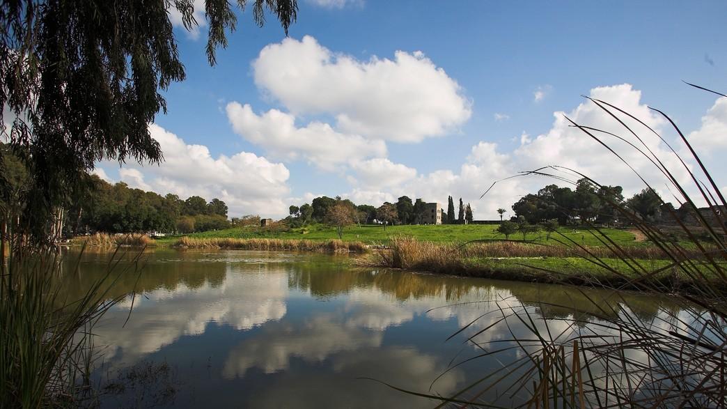 גן לאומי ירקון (צילום: דורון ניסים)