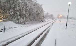 שלג באלרום (צילום: אליצור ברקוביץ)