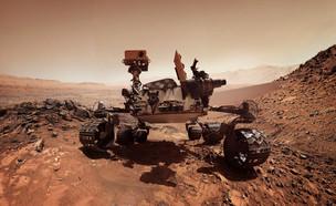 גשש מאדים (צילום: Triff, shutterstock)