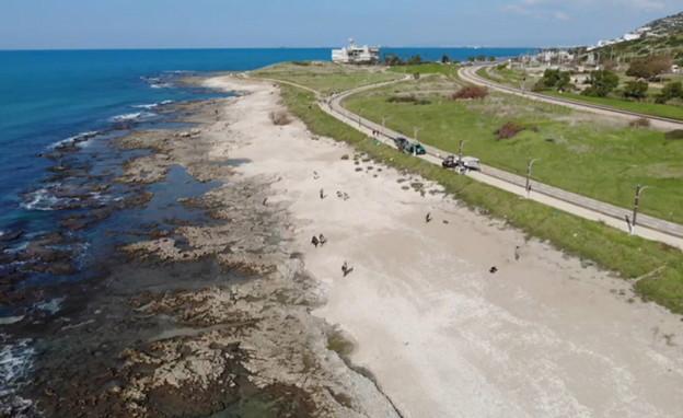 חוף תל שקמונה לאחר הזיהום (צילום: תומר עופרי, רשות הטבע והגנים)