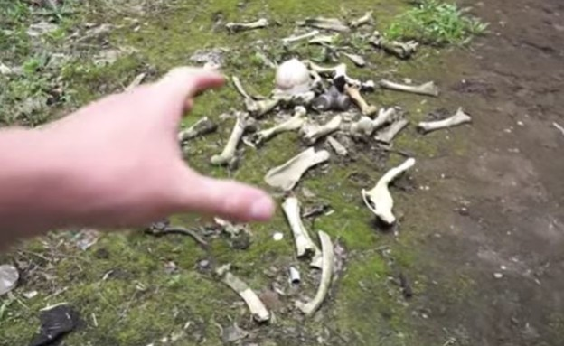 צ'רנוביל (צילום: Abandoned Explorer, יוטיוב)