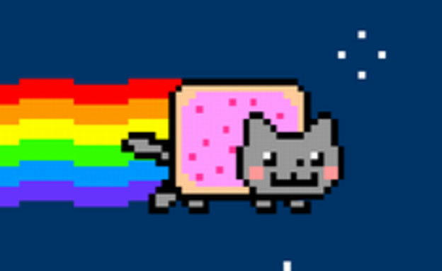 nyan cat (צילום: ויקיפדיה)