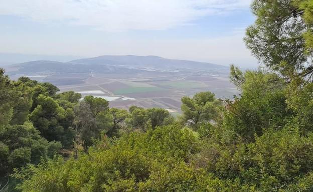 סובב הר תבור (צילום: ארז דגן)