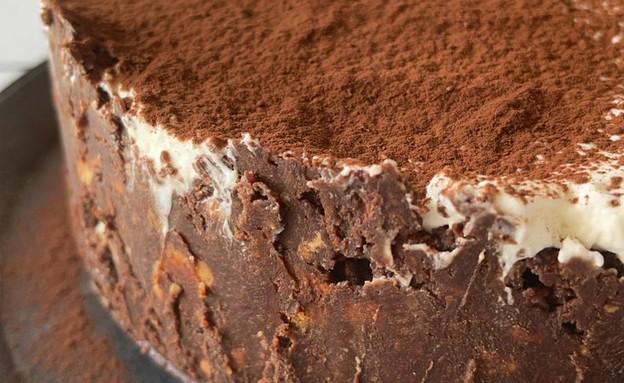 עוגת כדורי שוקולד וגבינה ללא אפייה (צילום: קרן אגם, אוכל טוב)