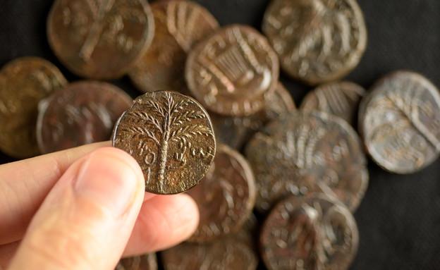 מטמון מטבעות בר כוכבא (צילום: דפנה גזית, רשות העתיקות)