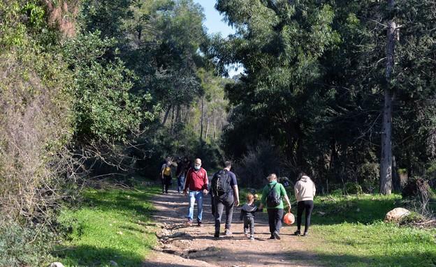 יער חוף הכרמל - חניון הזיתים (צילום: גיא אסיאג)