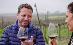 כל מה שרציתם לדעת על יין (צילום: יהודה וינברג)