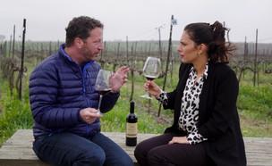 איך לטעום יין כמו מקצוענים? (צילום: יהודה וינברג)