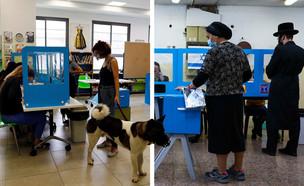 מצביעים ביום הבחירות (צילום: פלאש 90, AP)