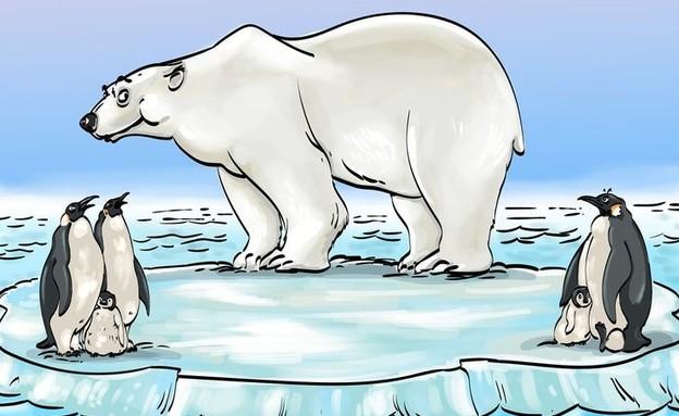 חידת הדוב (איור: brightside.com)