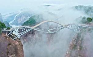 גשר רויי (צילום: מתוך האינסטגרם של ניבר מדר)