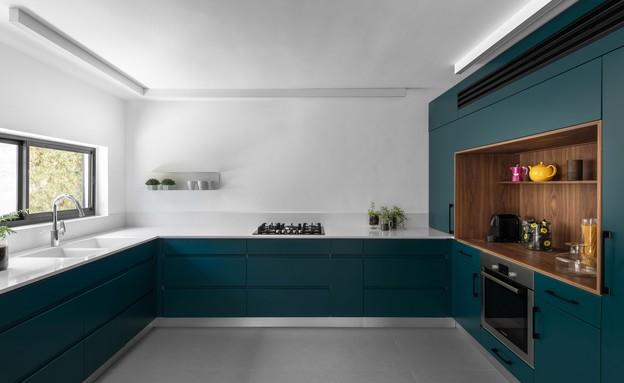 מטבח ירוק, עיצוב ליאת פוסט (צילום: טל ניסים)
