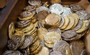 מטבעות זהב (צילום: Jazmine Thomas, shutterstock)