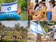 אירועי יום העצמאות 2021 קולאז' (צילום: גלעד קוורלציק, יונתן בן חיים, אדי ישראל, גלעד שושן)
