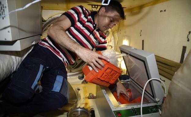 הדפסת בשר בתחנת החלל הבין-לאומית (צילום: 3D bioprinting solution)