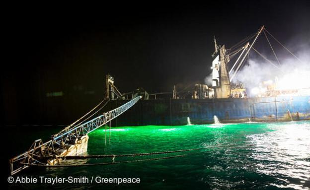 דיג בלתי חוקי (צילום: גרינפיס)