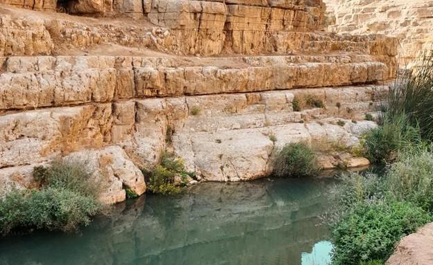 נחל פרת (צילום: ארז דגן)